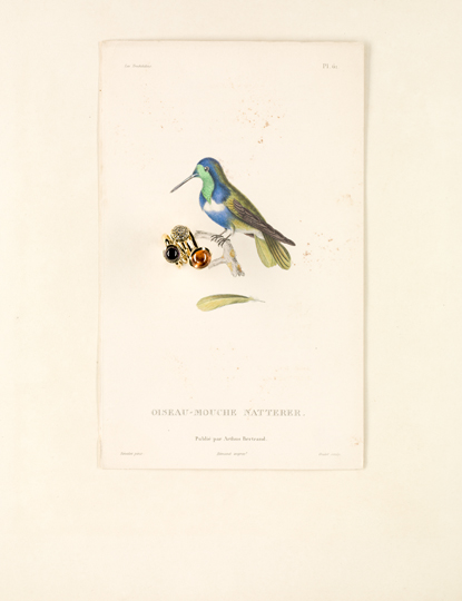 UDO TITZ / FASHION / AUDUBON / 2