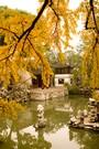 UDO TITZ / Editorials / SHANGHAI / 1